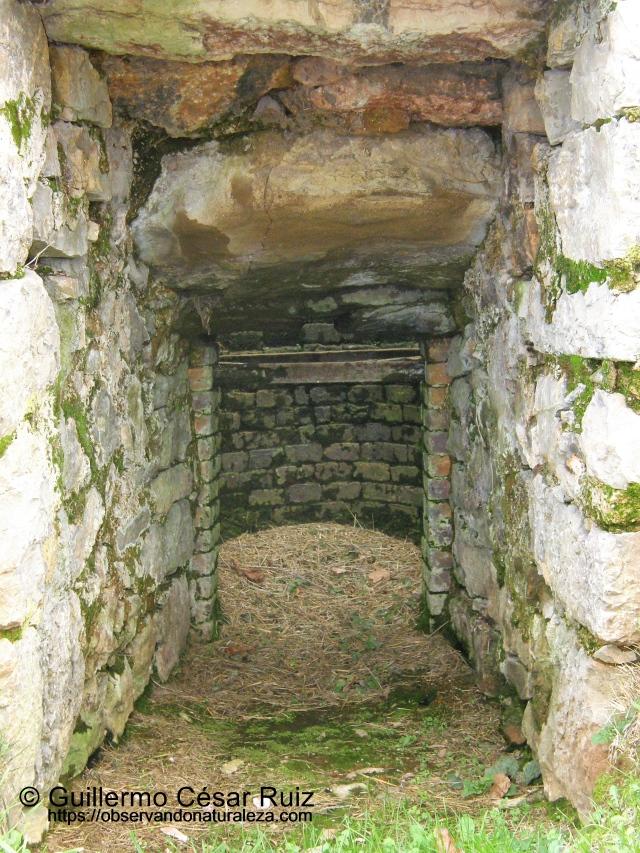 Calero de Muslera, interior