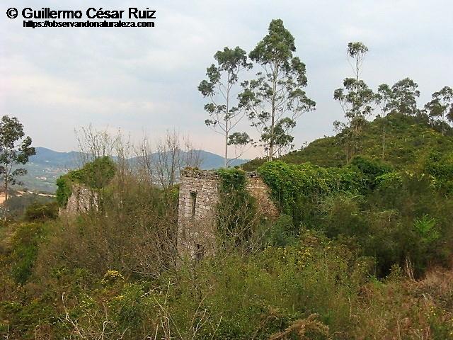 Ruinas de El Campamento Militar en la Trapa (Llugarín)